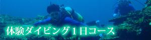 体験ダイビング1日コース