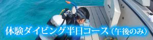 体験ダイビング半日コース